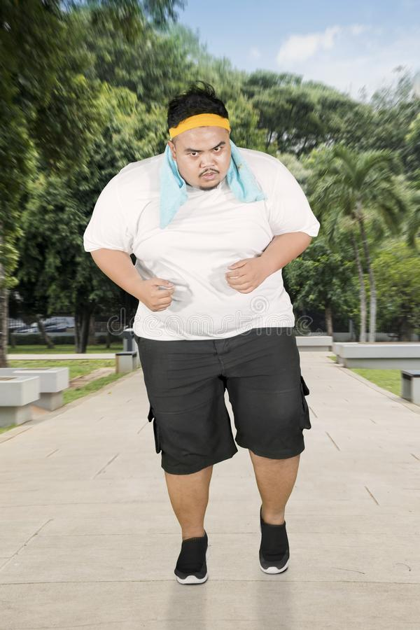 Obese man doing run speed exercises in park. Portrait of an obese man wearing sportswear while doing run speed exercises in the park royalty free illustration