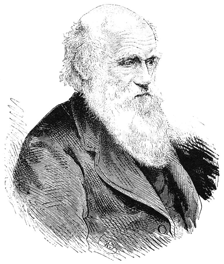 Free Portrait Of Charles Robert Darwin - An English Naturalist, Geologist And Biologist Royalty Free Stock Photo - 207770705