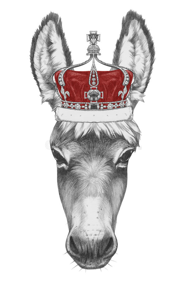 Free Portrait Of Donkey With Crown. Stock Photos - 84994363