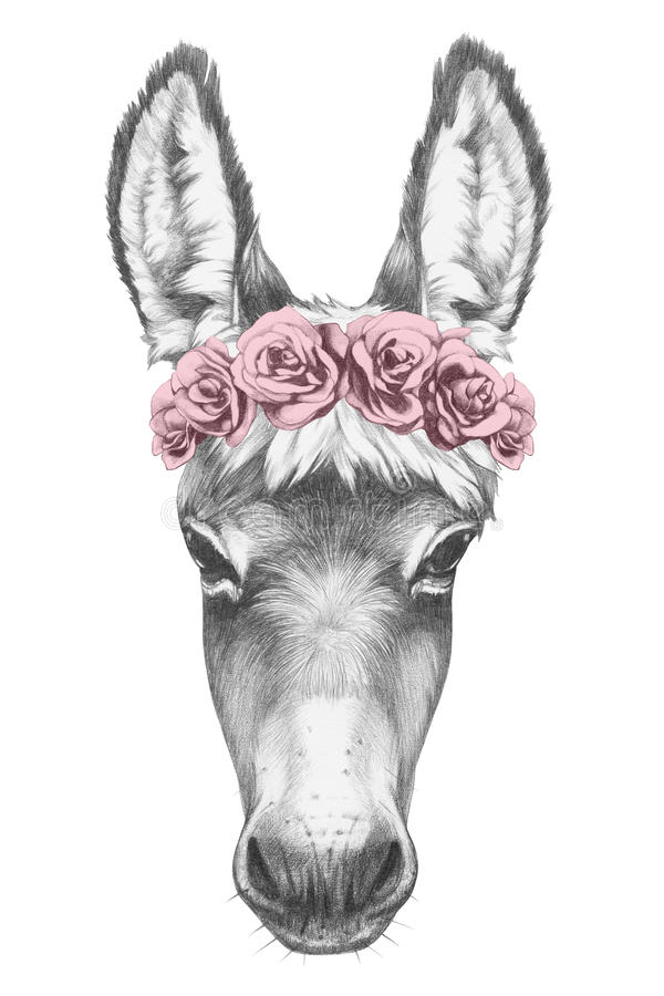 Free Portrait Of Donkey With Floral Head Wreath. Royalty Free Stock Photos - 84996778