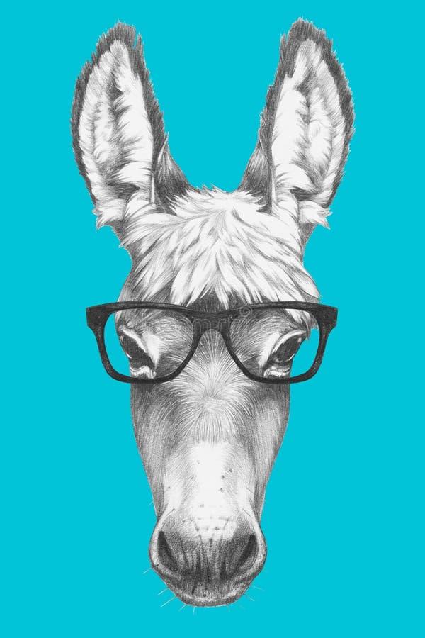Free Portrait Of Donkey With Glasses. Stock Photo - 85026260