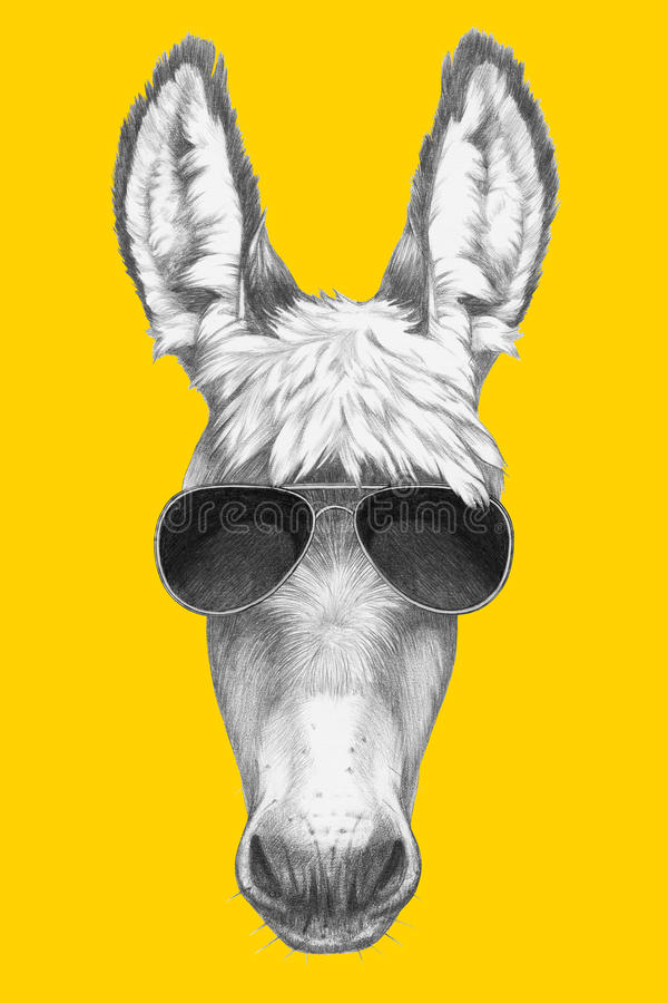 Free Portrait Of Donkey With Sunglasses. Stock Photography - 85025432