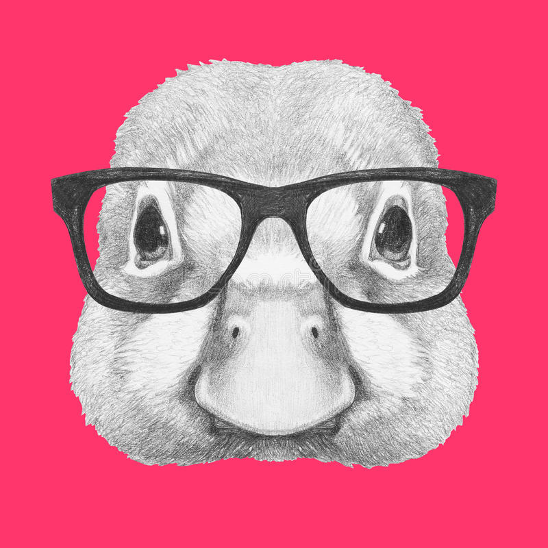 Free Portrait Of Duck With Glasses. Royalty Free Stock Photo - 85970385