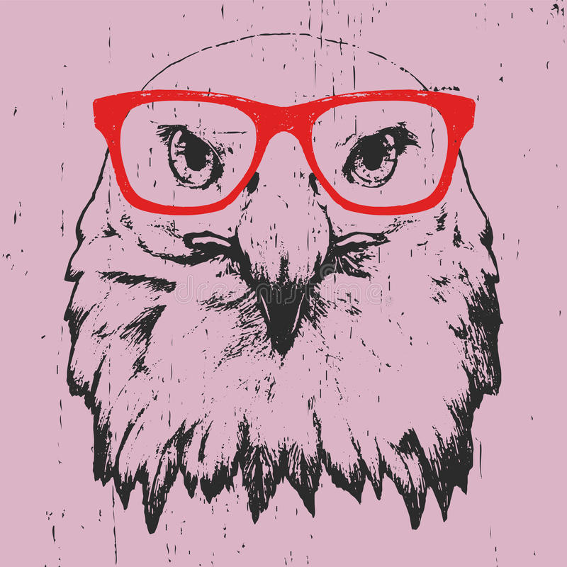 Free Portrait Of Eagle With Glasses. Stock Images - 92063064