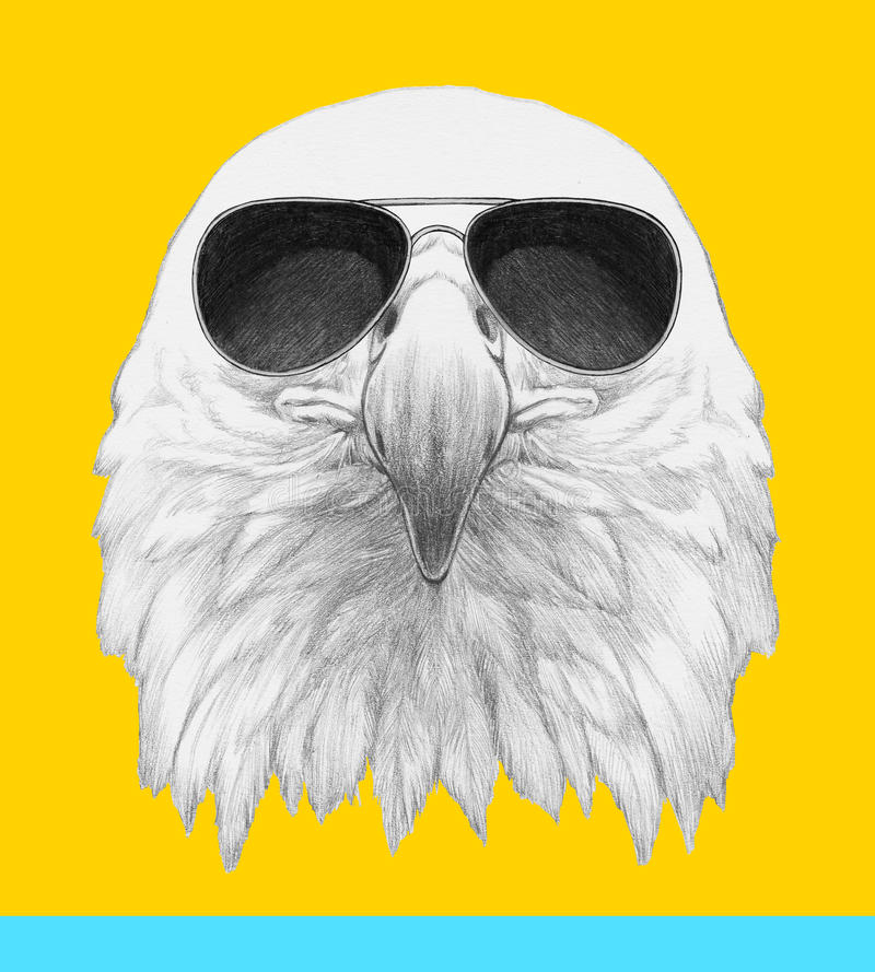 Free Portrait Of Eagle With Sunglasses. Royalty Free Stock Photography - 85476307