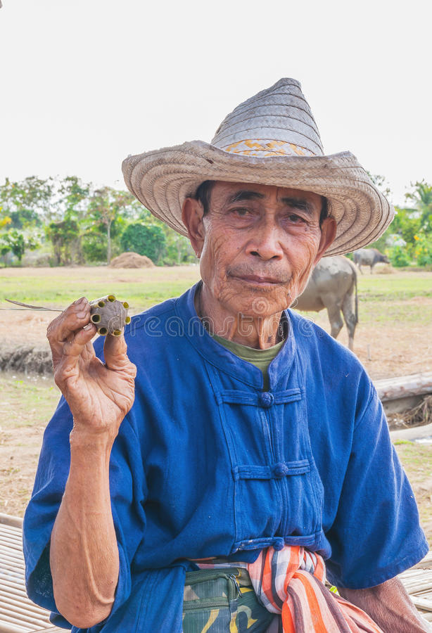 Portrait of old Thai farmer royalty free stock images