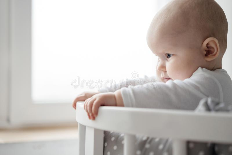Portrait of one year old baby in the crib. Surprise and plump cheeks. royalty free stock image
