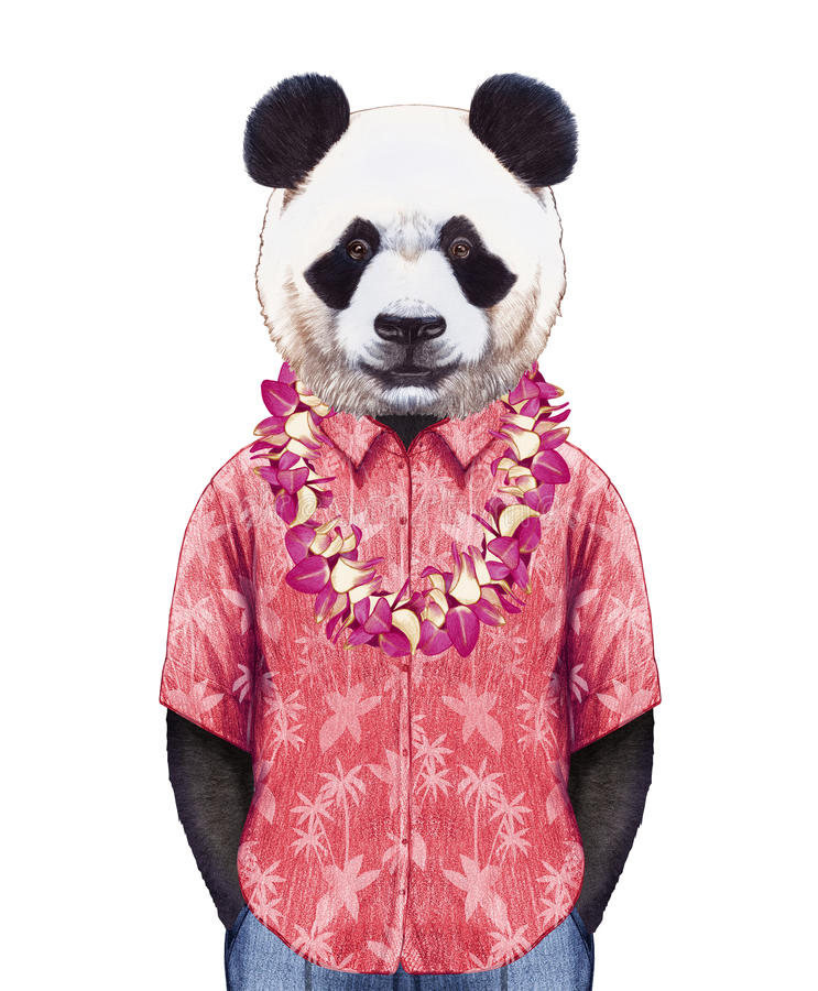 Portrait of Panda in summer shirt with Hawaiian Lei. royalty free illustration