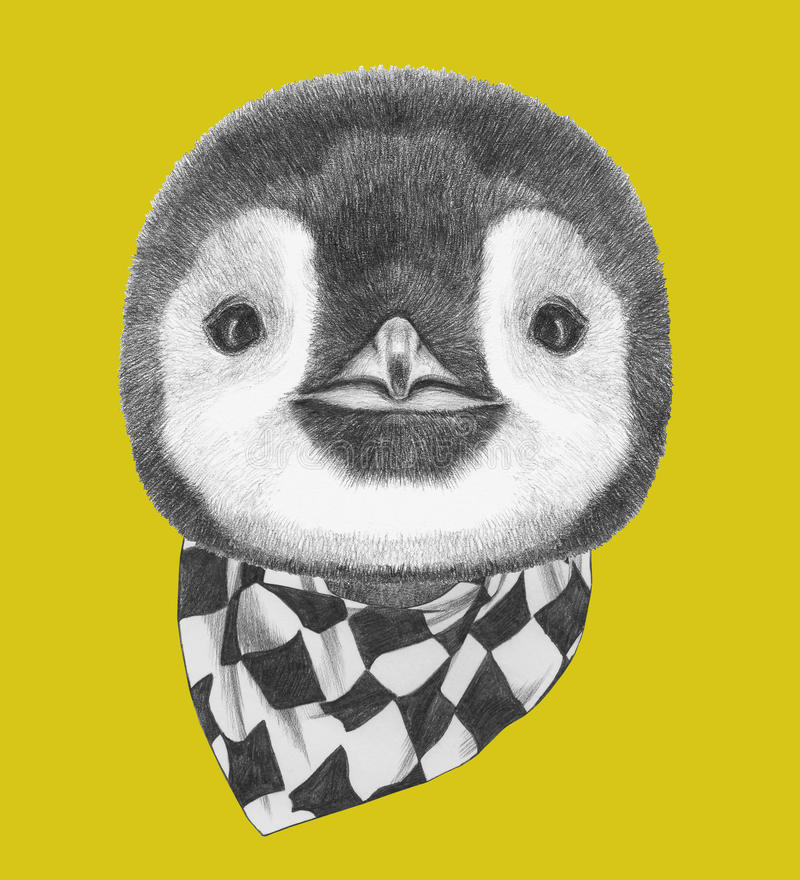 Portrait of Penguin with scarf. Hand drawn illustration royalty free illustration