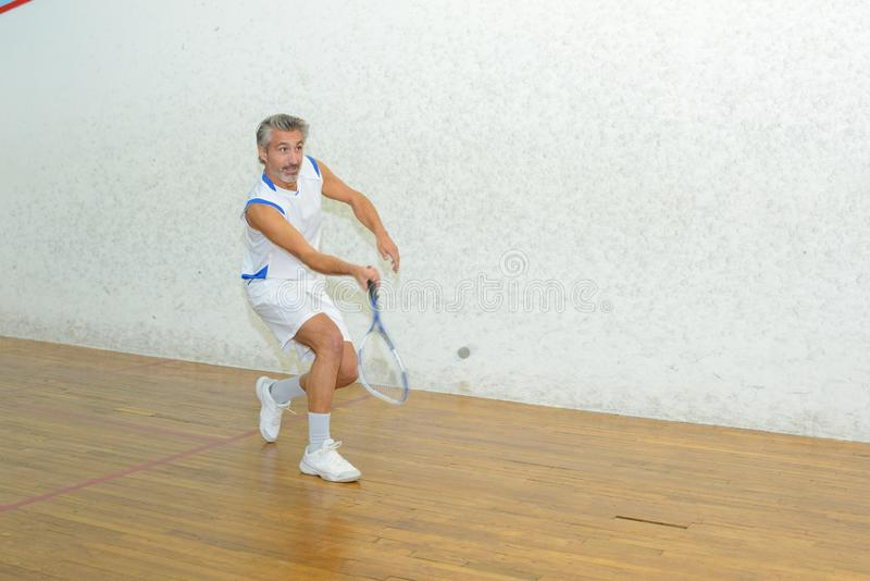 Portrait player squash royalty free stock images