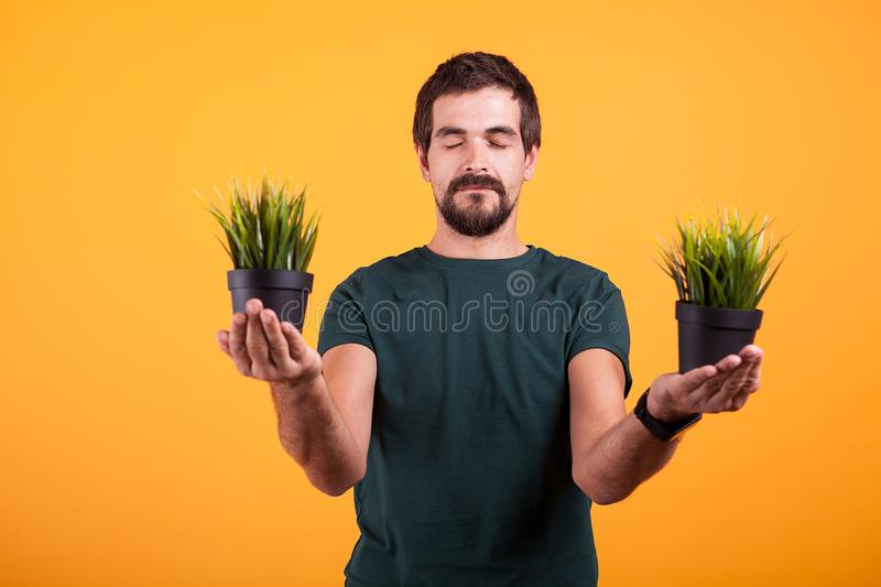 Portrait of positive man in serenity state of mind holds two pots with green grass royalty free stock image