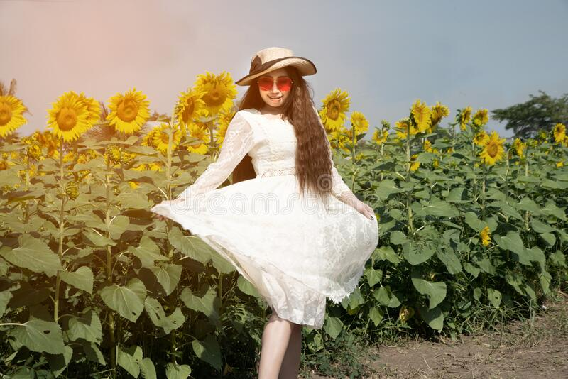 Portrait of pretty Asian women are fun,happiness and pose in a variety of gestures in sunflower fields. Portrait of pretty Asian woman are fun, happiness and royalty free stock photography
