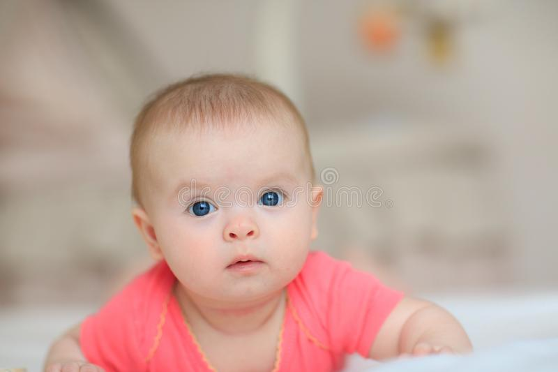 Portrait of pretty baby girl with blue eyes. Cute little baby girl looking into the camera royalty free stock photo