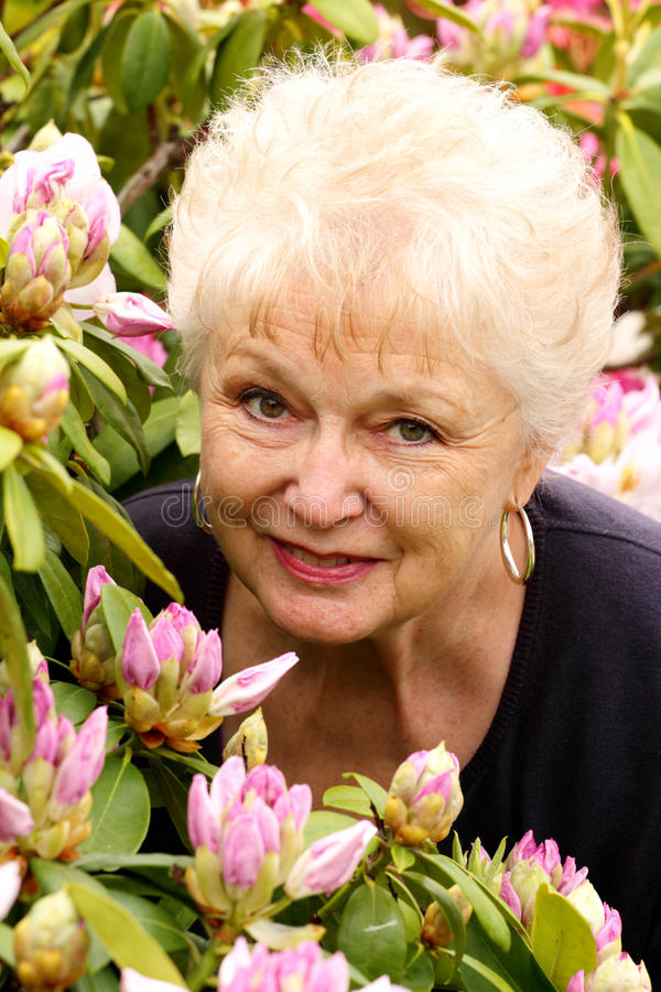 Portrait of a Pretty Older Lady in Her Flowers. A portrait of a pretty white haired older lady in her rhododendron flower garden stock image