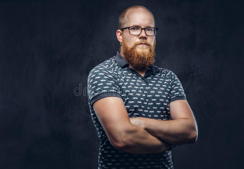 Portrait of a redhead bearded male dressed in a t-shirt posing with crossed arms. Isolated on dark textured background. Portrait of a redhead bearded male stock images