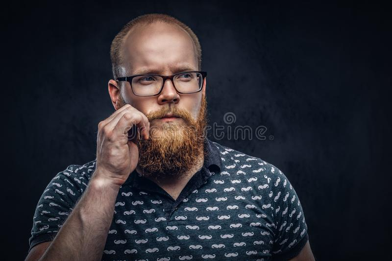 Portrait of a redhead bearded male dressed in a t-shirt posing with a hand on his mustache. Isolated on a dark textured. Portrait of a pensive redhead bearded stock image