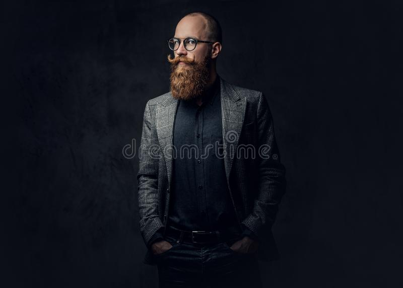 Redhead bearded male in a suit. Portrait of redhead bearded male in eyeglasses dressed in an elegant wool suit over grey background royalty free stock photography