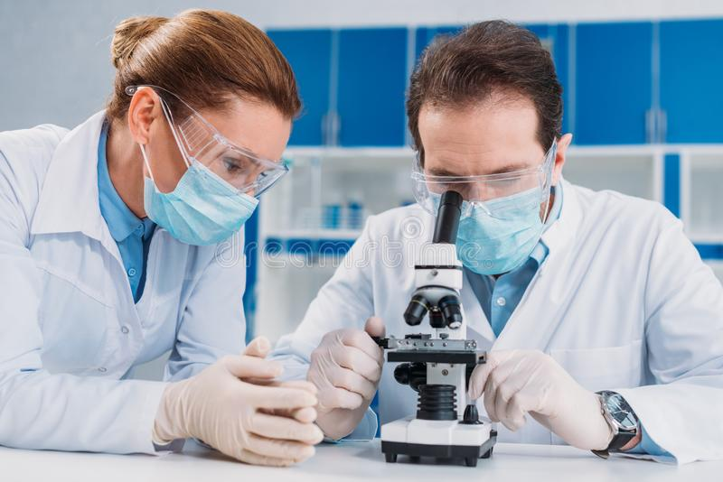portrait of researchers in medical masks and gloves working with microscope together stock photo