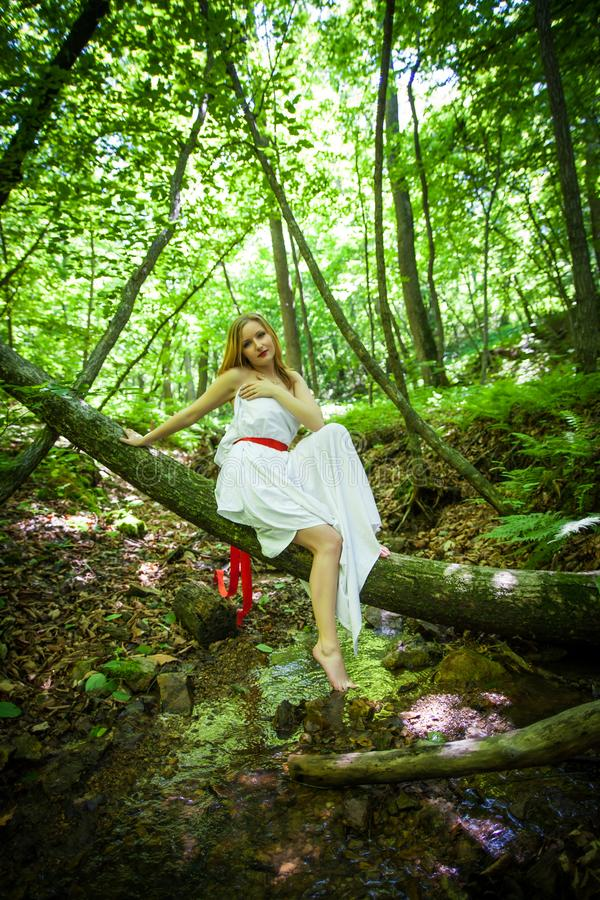 Portrait of romantic blonde woman in white dress in fairy forest, selective focus. concept of fabulous nymph royalty free stock images