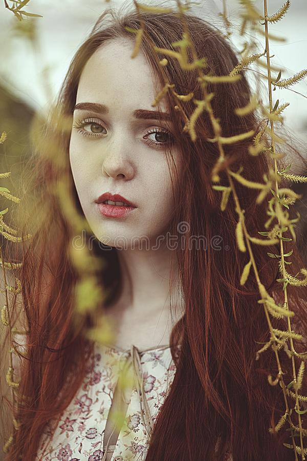 Portrait of a romantic girl with red hair in the wind under a willow tree. stock images