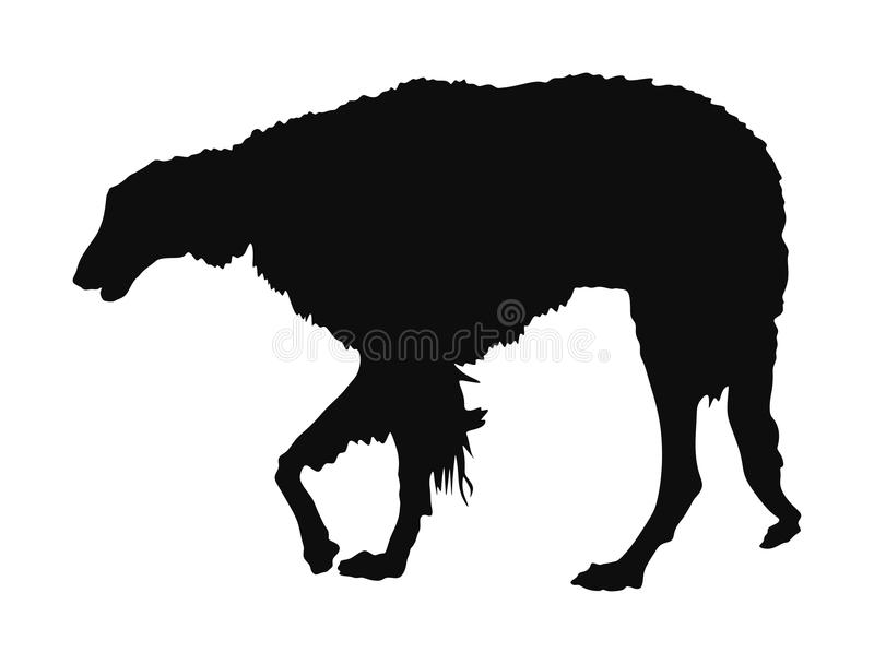 Portrait of Russian Wolfhound dog vector silhouette. Portrait of Russian Wolfhound dog vector silhouette illustration isolated. Borzoi silhouette Russian royalty free illustration