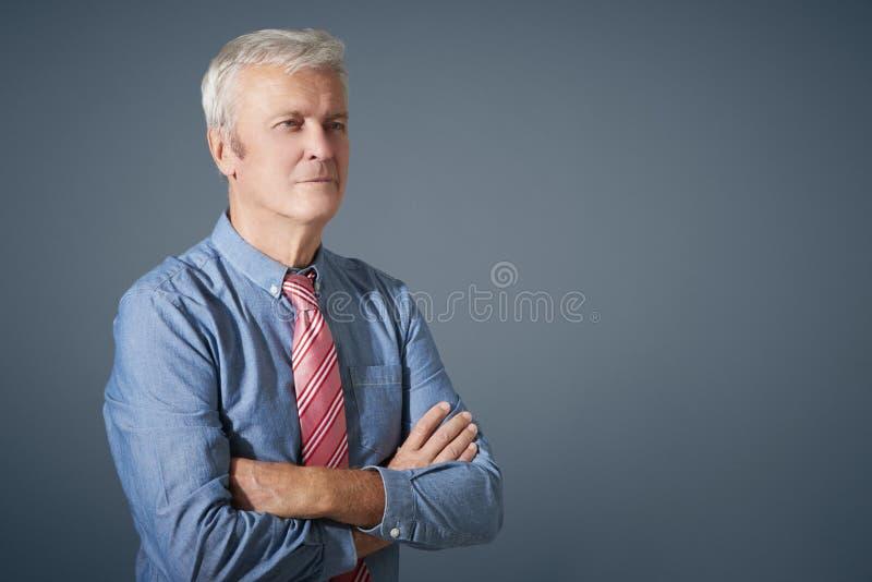 Portrait sûr d'homme supérieur images libres de droits