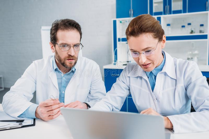 portrait of scientists in lab coats and eyeglasses working on laptop together at workplace royalty free stock photos