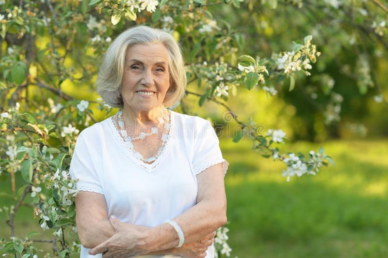Portrait of senior beautiful woman in spring park. Senior smilling beautiful woman posing in spring park royalty free stock images