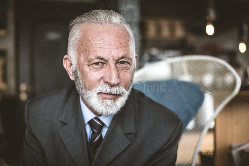 Senior businessman. Portrait of Senior businessman. Close up royalty free stock photography