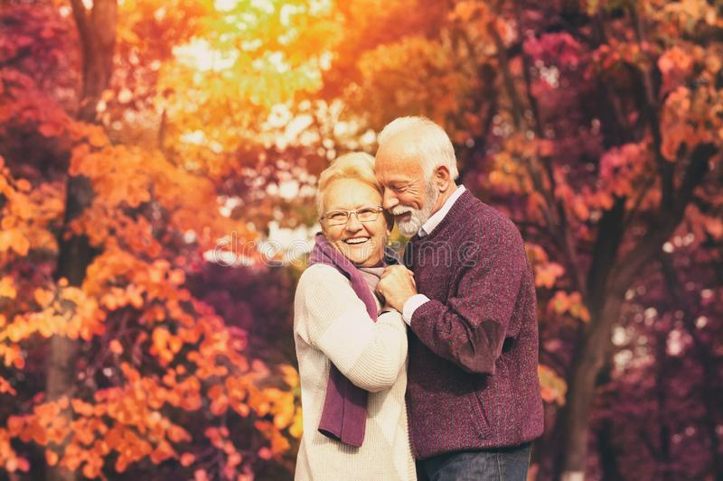 Portrait of senior couple, husband hugging kissing his wife in cheek stock photography