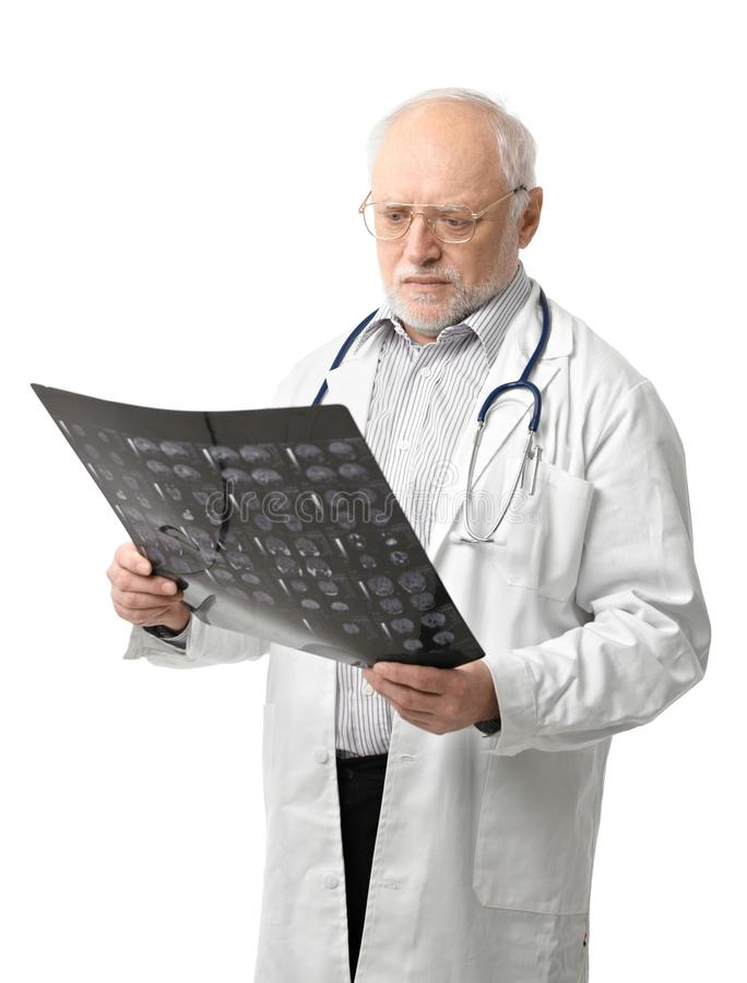 Portrait of senior doctor looking at X-ray image. Portrait of serious senior doctor looking at X-ray image. Isolated on white background royalty free stock photo