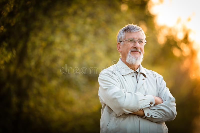 Portrait of a senior man outdoors. Looking content, happy, in good health enjoying his retirement days royalty free stock photo