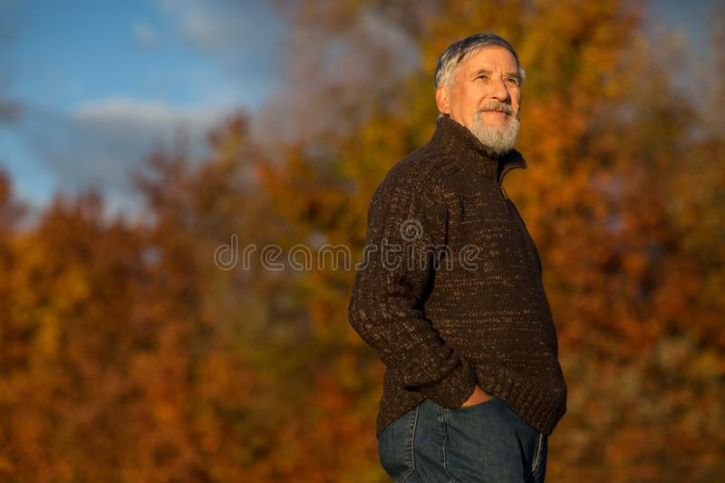 Portrait of a senior man outdoors, walking in a park royalty free stock images