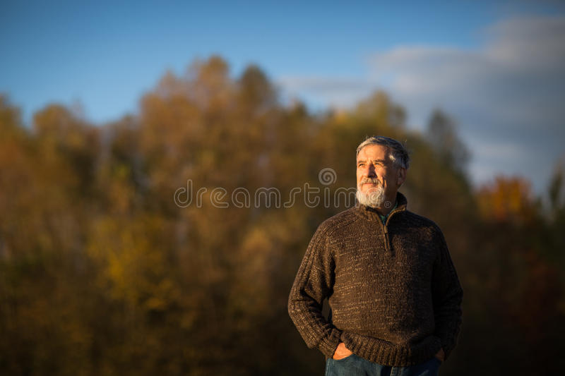 Portrait of a senior man outdoors, walking in a park. Shallow DOF; color toned image royalty free stock image