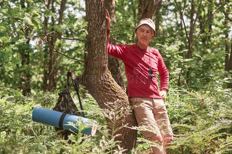 Portrait of senior man standing near tree over forest background. Mature man with rucksack and rug stops to have rest after long royalty free stock image
