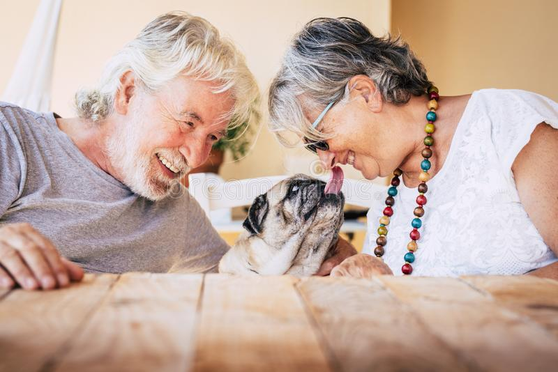 Portrait of senior mature caucasian people  couple with funny pet pug dog kissing and having. fun together with love and happiness stock photography