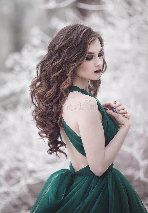 Portrait of a sensual long-haired girl with closed eyes in an emerald fairy dress in the winter forest. Fairy tale stock photos