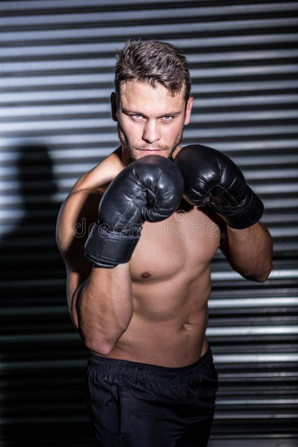 Portrait of serious muscular boxer. In crossfit gym stock photo