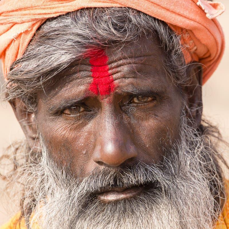 Portrait of Shaiva sadhu, holy man in Varanasi, India royalty free stock image