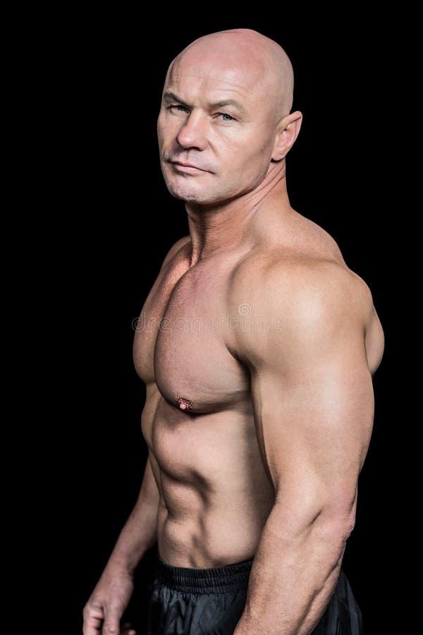 Portrait of shirtless bald man stock photos