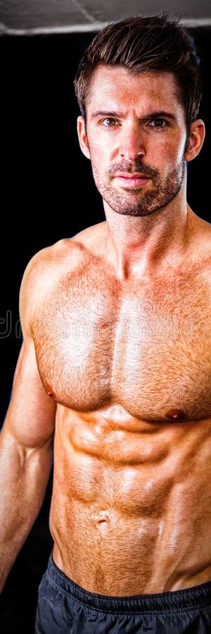 Portrait of shirtless male athlete in gym royalty free stock photography