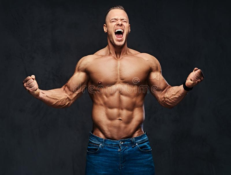Portrait of shirtless muscular male in a jeans. royalty free stock photo