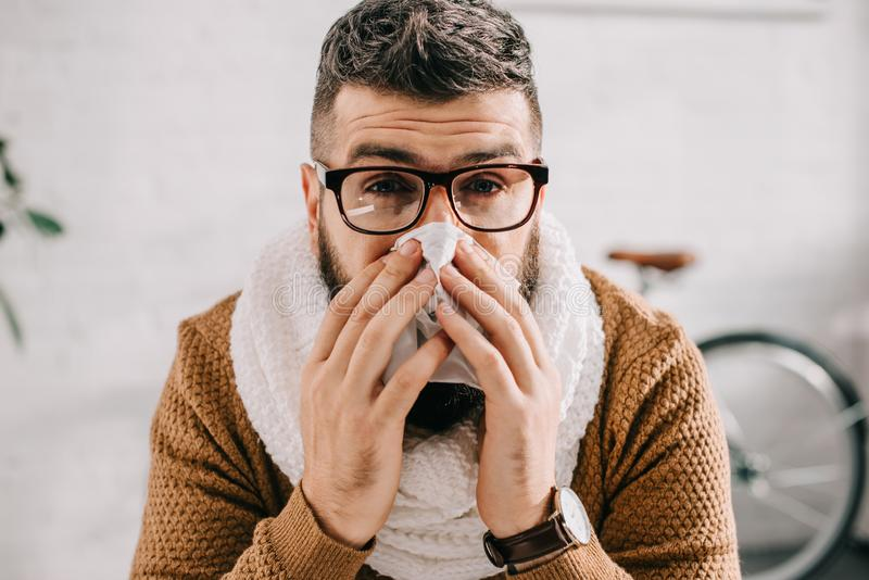 Portrait of sick man in knitted scarf sitting in office, sneezing and covering mouth stock photography