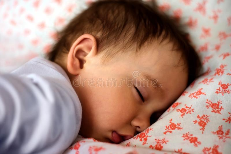 Portrait of a sleeping little toddler child royalty free stock photography