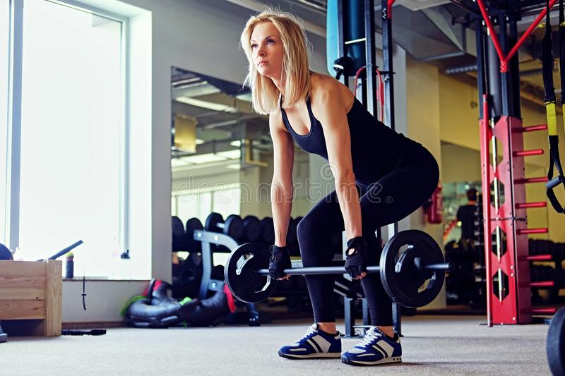 Slim sporty blond female doing exercise with barbell in a gym club. royalty free stock photo