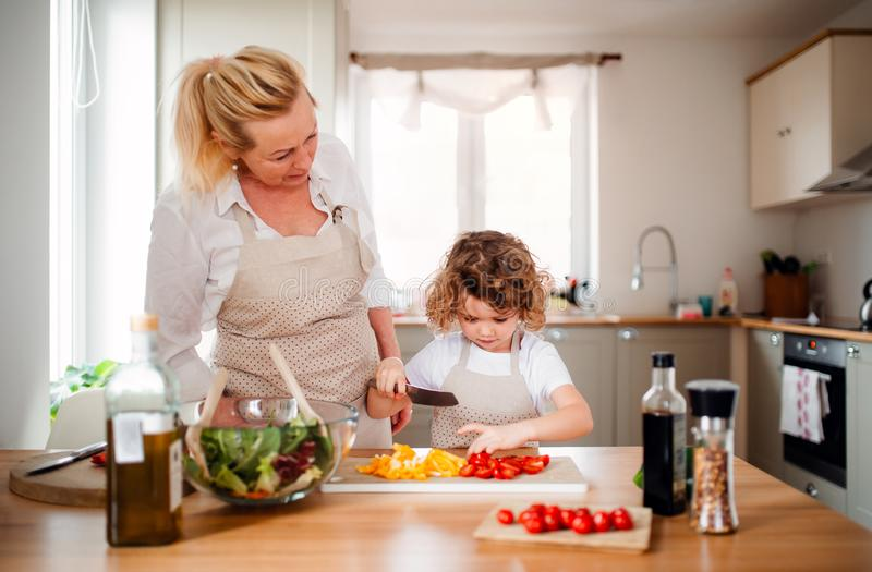 A portrait of small girl with grandmother at home, preparing vegetable salad. royalty free stock image