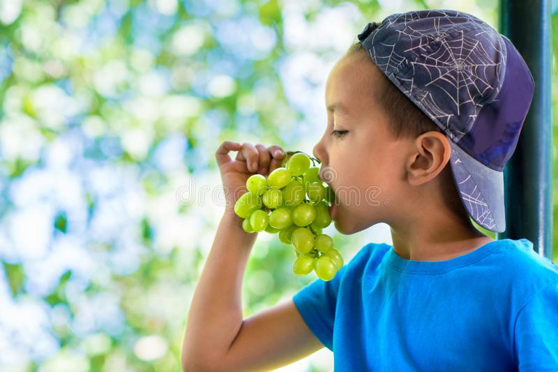 Portrait of a smiling little boy in a blue T-shirt and cap sitting with a bunch of grapes royalty free stock image