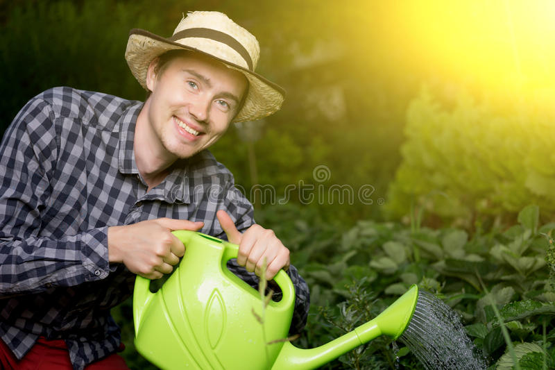 Portrait of smiling male gardener watering plants at greenhouse royalty free stock image