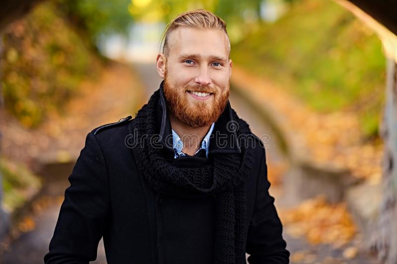 Portrait of smiling redhead male. royalty free stock photos