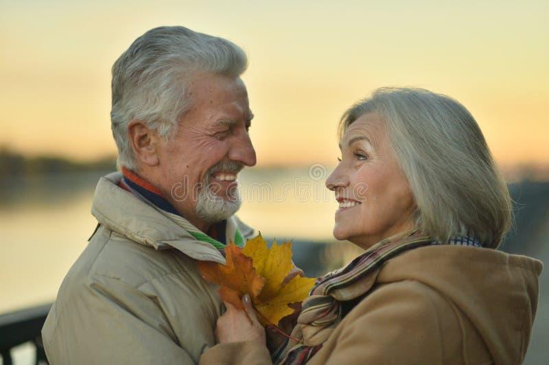 Portrait of smiling senior couple posing in park stock photo